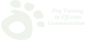paw watermark with type